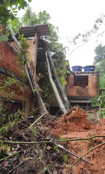 Defesa Civil de Barra Mansa faz vistoria em imóvel atingido por árvores durante as chuvas desta sexta-feira, 26